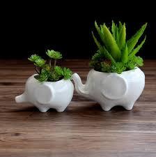 Indoor Planter Pots by Ceramic Indoor Plant Pots Ceramic Indoor Plant Pots Suppliers And