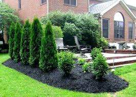 Backyard Privacy Ideas Backyard Privacy Ideas Cheap Garden Surprising Front Yard Privacy