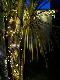 Fairy Light Tree by String Fairy Lights 24v Outdoor 5m Warm White Led