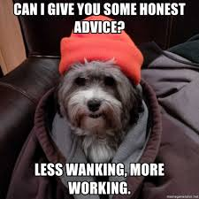Advice Dog Meme Generator - can i give you some honest advice less wanking more working