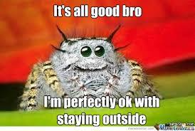 Spider Bro Meme - thank you spider bro by recyclebin meme center