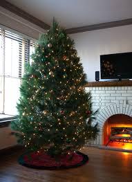 fresh white pine christmas tree online garden goods direct
