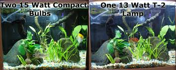 t 2 subminiature aquarium lighting via aqua t8 light replacement