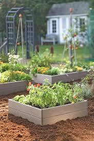 fall oklahoma vegetable gardening vegetable garden plans x pdf