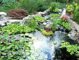 Home Design Jobs Toronto Backyard Landscape Design With Pool Inspiring And Feminine