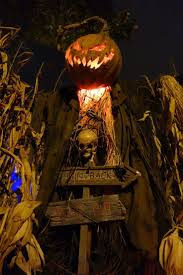 531 best scarecrows images on pinterest scarecrows halloween