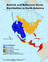 North America South America Map by Oxygen Group Photography Central South America Map Of Central And