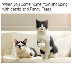 Fancy Feast Meme - when you come home from shopping with catnip and fancy feast