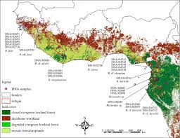 Map Of Central Africa by Forest Refugia In Western And Central Africa As U0027museums U0027 Of