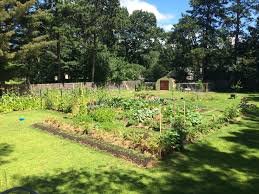 vegetable u0026 herb gardens u2013 urban homesteader vt