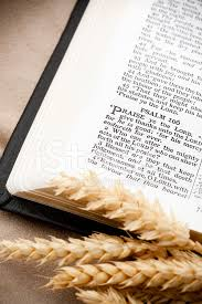 thanksgiving bible passage and wheat psalm 106 stock photos