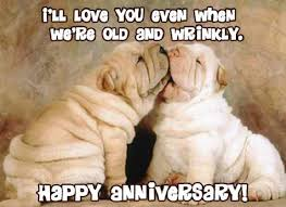 wedding quotes anniversary 20 wedding anniversary quotes for your