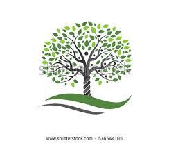 family tree symbol icon logo design stock vector 576544105