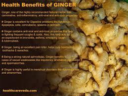 Is Ginger Root A Vegetable - 127 best ginger root a super food images on pinterest fresh