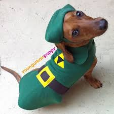 Halloween Costumes Wiener Dogs Peep Subjected Similar Future
