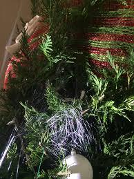 christmas tree bugs christmas ideas
