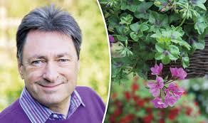 Winter Garden Jobs - alan titchmarsh get garden u0027odd jobs u0027 out the way now to beat the