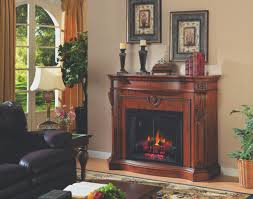 Synergy Interior Design Fireplace New Synergy Electric Fireplace Images Home Design