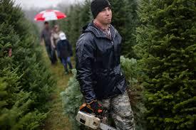 taylor christmas tree farm christmas lights decoration