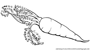 carrot clipart black and white cliparts for you