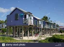 belize caye caulker beach bungalow eco tourism ecotourism