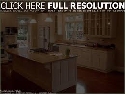 kitchen cabinets glass doors both sides tehranway decoration
