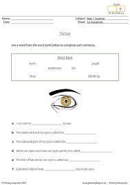 primaryleap co uk parts of the eye worksheet