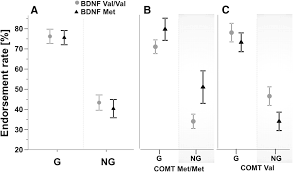 interaction of bdnf and comt polymorphisms on paired associative