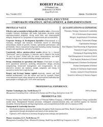 Sample Ceo Resumes by 461 Best Job Resume Samples Images On Pinterest Job Resume