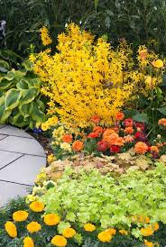 27 best gardening images on pinterest flowers landscaping and