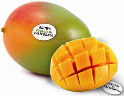 organic fruit of the month club organic keitt mango buy organic keitt mango online