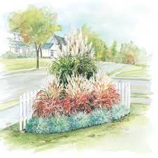 ornamental grass garden add dramatic year color to your
