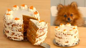 dog cake carrot cake for dogs recipe tastemade