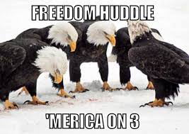 America Eagle Meme - freedom huddle murica know your meme