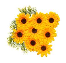 Artificial Sunflowers Artificial Sunflowers On White Background Stock Photo Image