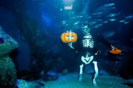 Zombie Aquarium Decorations Make Your Own Zombie Baby Halloween Decorations Ktar Com