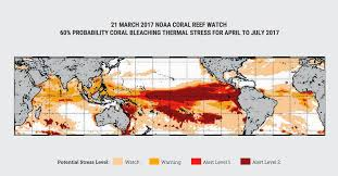 Coral Reefs Of The World Map by Climate Council Decries Massive Adani Mine As The Great Barrier