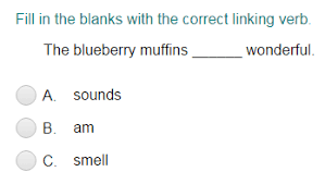 identifying a linking verb quiz turtle diary