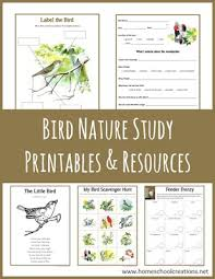 notebook and worksheets archives homeschool creations
