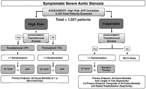 2012 accf aats scai sts expert consensus document on transcatheter