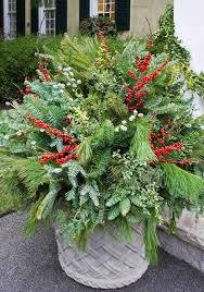Plants For Winter Window Boxes - tips for winter pots u2014 enchanted gardens