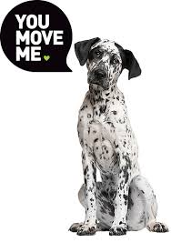 Moving Company Quotes Estimates by Get A Moving Quote Estimate Your Moving Costs You Move Me