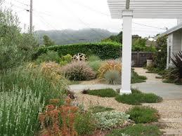 rooftop garden lazar landscape