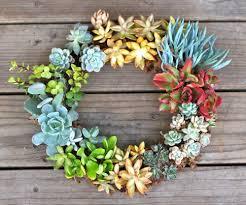 succulent wreath diy simple stunning living succulent wreath pretty prudent
