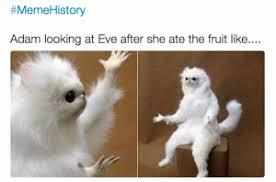 Funny Monkey Meme - adam and eve white monkey meme