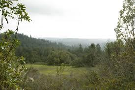 santa cruz county homes for sales david lyng real estate