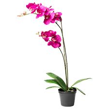 artificial orchids artificial flowers plants ikea ireland dublin