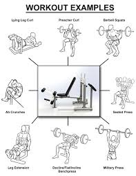 foldable compact weight bench v2 home gym singapore