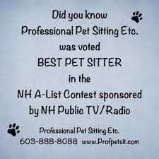 award winning dog walking cat care u0026 pet sitting in new hampshire