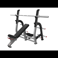 Nautilus Bench Nautilus Incline Bench Press Olympic Bench Savage Strength